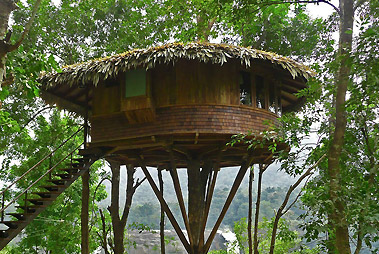 Treehouse Tour