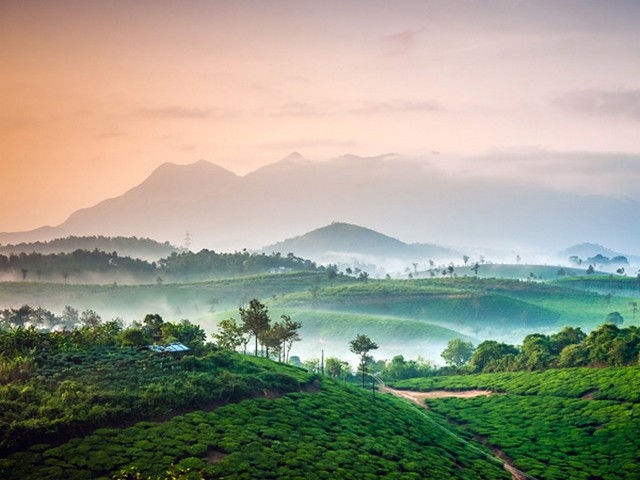 Wayanad: hill stations in kerala