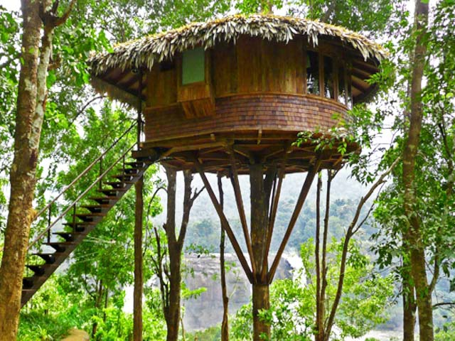 Rainforest Tree House in Athirapally