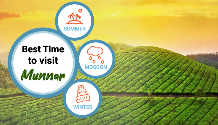 best-time-to-visit-munnar
