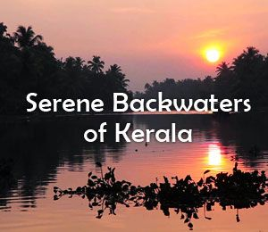 serene-backwaters-of-kerala.jpg