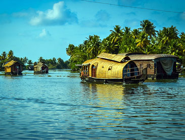 Kerala Backwaters and Jungles