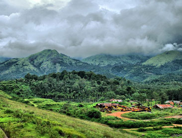 Short Escape to Wayanad