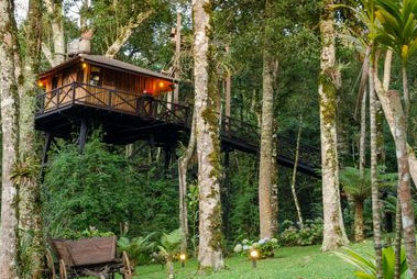 Kollam Tree Houses